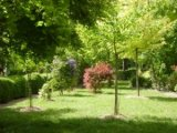 Société d'horticulture : cours de taille samedi 3 mars