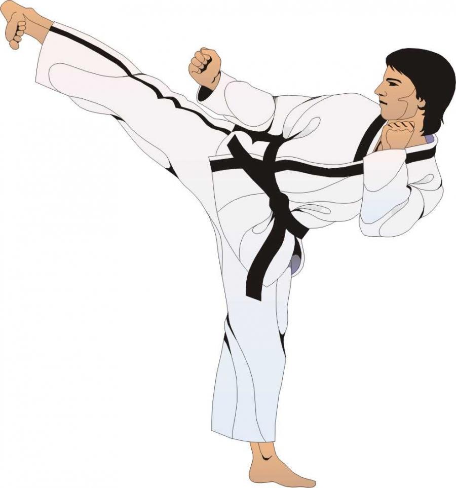entente bauloise section karat u00e9 site de la commune de martial arts clip art hapkido martial arts clipart joint locks